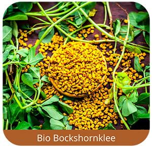 Bockshornklee-Content-Quader-1